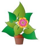 Vektor lagd in växt med blomman royaltyfri illustrationer