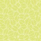 Vektor Lite-Grün lässt nahtlosen Musterhintergrund Vervollkommnen Sie für Gewebe und scrapbooking, Tapetenprojekte lizenzfreie abbildung