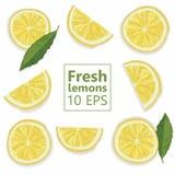 Vektor lokalisierte Zitronenscheiben stockbilder