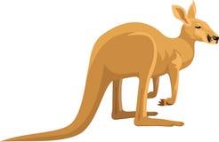 Vektor lokalisierter Känguru Stockfotos