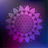 Vektor Lotus Mandala mit Blume des Lebens auf einem kosmischen Hintergrund Stockfoto
