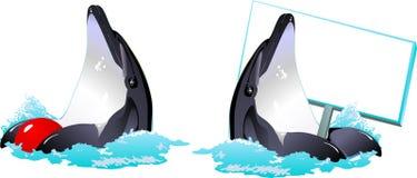 Vektor med delfiner stock illustrationer