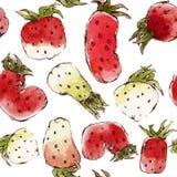 Vektor-nahtloses Muster mit Aquarell-Erdbeeren Stockfotografie