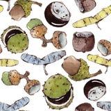 Vektor-nahtloses Muster mit Aquarell-Samen und Nüssen Lizenzfreie Stockbilder