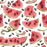Vektor-nahtloses Muster mit Aquarell-Wassermelone Stockfotografie