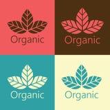 Vektor-organische Blätter ökologischer Logo Illustration Stockfotos