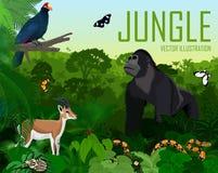 Vektor-Ruanda-Dschungelregenwald mit Rosss Turaco, Gazellenimpala, Pythonschlange, männlichem Gorilla und Schmetterlingen vektor abbildung