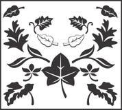 Vektor-Sammlung von Autumn Leaves Lizenzfreies Stockbild