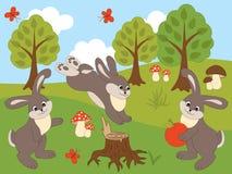 Vektor-Satz nette Karikatur-Kaninchen Stockfoto