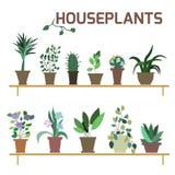 Vektor-Satz Zimmerpflanzen in den Töpfen Lizenzfreie Stockfotografie