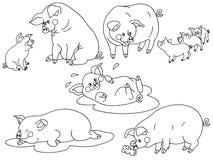 Vektor-Schweine eingestellt Stockbild