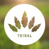 Vektor-Stammes- Federn Logo Illustration Lizenzfreie Stockfotos