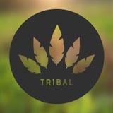 Vektor-Stammes- Federn Logo Illustration Stockfoto