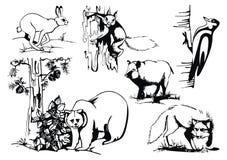 Vektor stellte mit wilden Tieren ein Lizenzfreies Stockbild