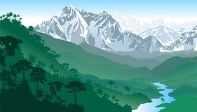 Vektor-tropische Regenwald-Dschungel-Berge Lizenzfreies Stockbild