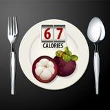 Vektor von Kalorien in der Mangostanfrucht Lizenzfreie Stockbilder
