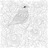 Vektor zentangle Vogel Exotischer und tropischer Kolibri O der Karikatur lizenzfreie abbildung