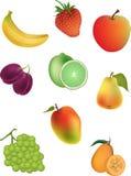 Vektorabbildung der Früchte Stockbilder