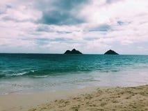 Vektorabbildung des tropischen Strandes Stockbild