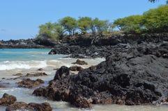 Vektorabbildung des tropischen Strandes Stockbilder