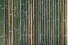 Vektorabbildung ENV 10 Lizenzfreie Stockfotografie