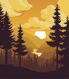 Vektorabendgebirgswaldhintergrund Lizenzfreie Stockfotos
