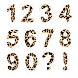 Vektoralfabetnummer, moderiktig leopardmodell Arkivbilder