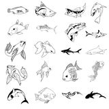 Vektoransammlung von 30 Fischtypen stock abbildung