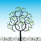 Vektorapfelbaum am Sommer Stockfotos