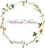 Vektoraquarell-Blumenrahmen lizenzfreie stockfotografie