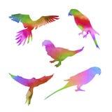 Vektoraquarell-Papageiensatz Lizenzfreies Stockbild