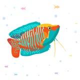 Vektoraquariumfisch-Schattenbildillustration Aquarium-Fischikone der bunten Karikatur flache für Ihr Design Stockbilder
