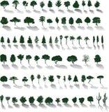 Vektorbäume mit Schatten Stockfotos