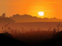Vektorbackround des Feldes im Sonnenuntergang. Lizenzfreies Stockfoto
