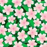 Vektorbakgrund med bladbeståndsdelar och körsbärsröda blomningar royaltyfri illustrationer