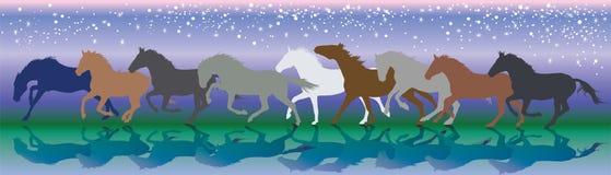 Vektorbakgrund med hästar som kör galopp i natten Royaltyfria Bilder