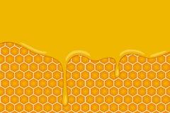 Vektorbakgrund med honungskakor och honungtecknade filmen utformar Royaltyfri Foto