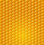 Vektorbakgrundstextur, gul havre vektor för bild för designelementillustration vektor illustrationer