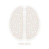 Vektorbegrepp för mänsklig hjärna och kreativiteti den mono tunna linjen stil Arkivfoto