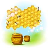 Vektorbiene und -bienenwaben Stockfotos