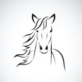 Vektorbild av en design för hästhuvud på vit bakgrund, hästlogo wild djur Arkivbild