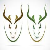 Vektorbild av en head impala royaltyfri illustrationer