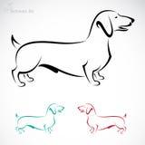 Vektorbild av en hund (taxen) stock illustrationer