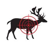 Vektorbild av ett hjortmål Arkivfoto