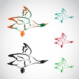 Vektorbild einer Fliegenwildente Lizenzfreie Stockfotos