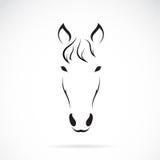 Vektorbild eines Pferdegesichtes Stockfoto