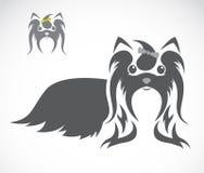 Vektorbild eines shih tzu Hundes Lizenzfreies Stockbild