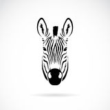 Vektorbild eines Zebrakopfes Lizenzfreies Stockfoto
