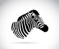 Vektorbild eines Zebrakopfes Stockfotografie