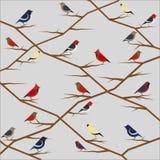 Vektorbild von Vögeln im Retrostil Stockfotos